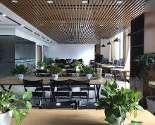 南京南站零距离(绿地之窗)精装修 高区 视野开阔 落地窗