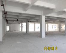 (出租)房东直租独栋整层一楼800平厂房,可分割