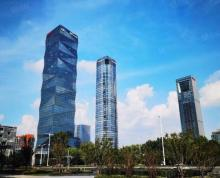 (出租)河西元通CBD核心(新地中心)标杆 精装修 豪华大厅