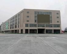 (出租)泗洪彩虹城商业广场招商火热进行中