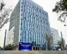 雨花软件谷柒采大厦精装修办公室出租 地铁口开发商直招