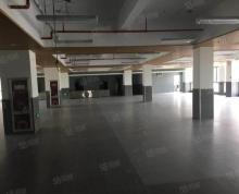 (出租)物业直招 独墅湖 负一楼800平仓库 也可分割400平出租