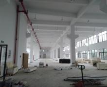 出租汾湖临沪大道新建双层厂房,面积7000平米,