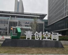 (出租)市政府 市行政中心 生态公园旁高端办公写字楼整体招