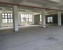 S1地铁 现房 江宁 禄口 空港开发区550-1600平 厂房 办公楼 50年产权 配套好 可贷款