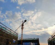 (出售)汊河经济开发区小独栋厂房 50年产权 政策优惠 可环评