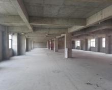 (出租) 江宁区殷巷商业区5000方办公楼对外出租