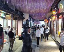 (出租)出租夫子庙建康路水游城附近临街纯一楼临街商铺 可餐饮行业不限