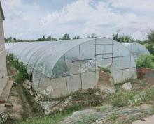 (出租)一般农业用地大棚种植苗木鱼塘可以建简易房靠近河流随时看租期长