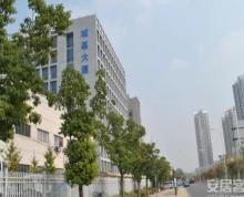 (出租) 江宁城基大厦 高档写字楼 100平米