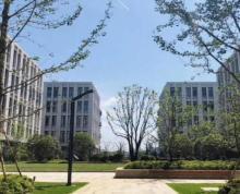 总部基地 高标准厂房 独立产权 多面积可分割 可按揭