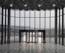 (出租)浦口高新区 新城总部大厦 十号线南京工业大学地铁口 豪华装修