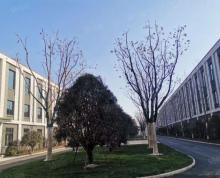(出租)全新独栋别墅厂房,政府扶持园区,可环评,1000到5000平