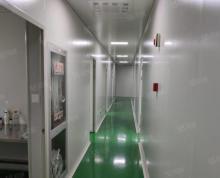 (出租)高新区科技城精装修万级无尘室车间1700平生物医药科技拎包进
