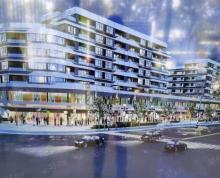 (出售)秦淮主城270度高 端社区覆盖环绕临街旺铺无盲点一拖二商铺