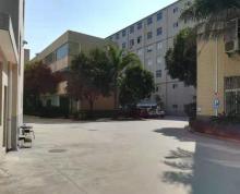 (出租) 金山工业区 落地一楼 复试厂房仓库出租 已隔两层 不拆迁