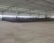 (出租)黄泥坝工业园1400平仓库,独门独院,大车好进出。