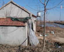 连云港市赣榆县17亩对虾养殖土地