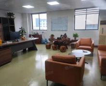 (出租)莘塔独栋多层3000平标准厂房可做淘宝电商 电子加工 研发楼