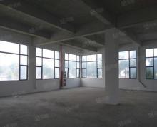 (出租)淞北路标准园区厂房出租 大小面积可分割 证件齐全