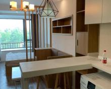 (出租)泰达MSD 城市公寓,东边户。环境优美,拎包入住!