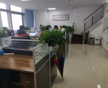 (出租) 河西万达旁 苏宁慧谷 复式挑高 精装含家具 可注测