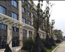 (出售)中天花园 北京路中学对门 158平方二层售208万 收租稳定