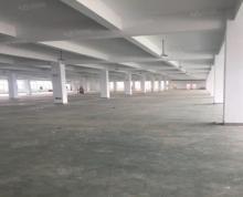 (出租)全新框架厂房,可做加工,另有二楼8000平10元一平