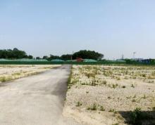 (出租)东善桥国有土地出租共500亩,5亩起租场地硬化好 ,可进半挂