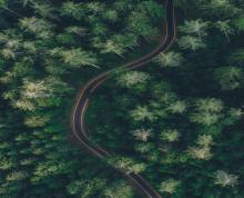 (转让)位于东海县西开发区石湖林场