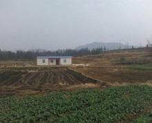 徐州睢宁县1000亩土地