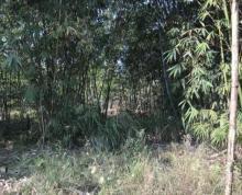 闽侯南屿3亩30亩个人山地农地出售