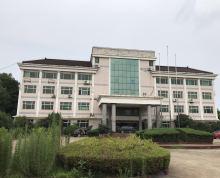 南京文创园、影视拍摄基地10000平厂房可分租