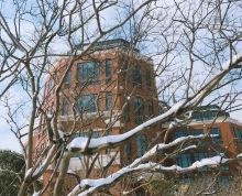 江宁方山 花园独栋办公楼 私家园林 独立电梯 可按揭 火热招商