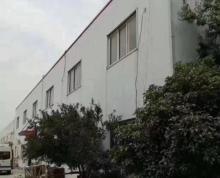 (出租)出租宿城区果园钢结构厂房