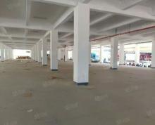 (出租)江宁湖熟工业园5000平标准砖混结构一楼仓库急租