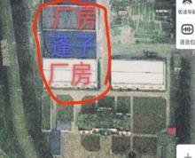(出租)房东出租!港城大道国家粮库西独院1500平厂房15万一年