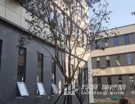(出售)双证齐全 50年产权 智能制造产业园区 8.1米层高可隔层