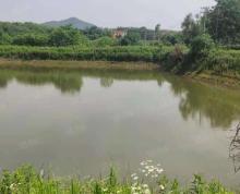 (出租)四个已经形成的鱼塘,允许集装箱,水量保障