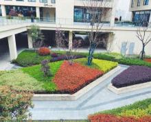 (出租)一号线旁,成熟园区,266平米,方正,采光佳,电梯入户