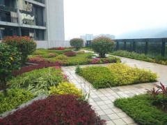 台江金融街万达独栋出租,3600平方,层高6米,车位40个