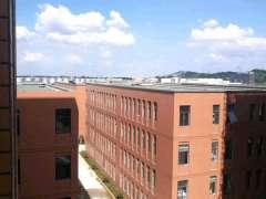 新港经济技术开发区500--1500平厂房办公楼租售证件齐全可贷款
