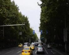 中央路650平商铺出租 纯一楼 停车方便适合培训