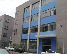 (出租)横泾新出 4000平方标准厂房对外招租