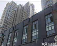 (出租) 浦口区可注册商住两用房 天凤国际大厦