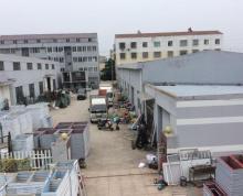 (出租)西园盘中小企业园D区 厂房 750平米