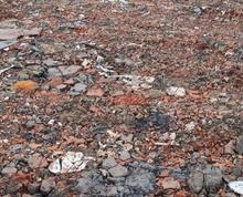 (出租)繁华大道附近40亩地出租,适合废铁回收,沙摆放