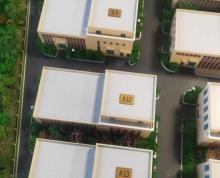 (出售)新盘首开特惠独栋单层厂房 出售 50年国有土地 政府政策补贴