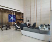 (出租)江北新区核心区 中央商务区自贸区 整层出租采光视野上风上水