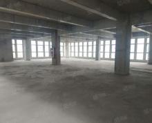(出租)无中介费 大柱距高标厂房 江北新区产业制造新城 配套成熟
